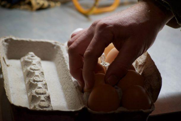 A hand placing eggs in a carton