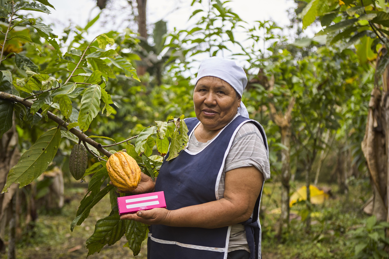 A cocoa producer in the Ecuadorian Amazon.