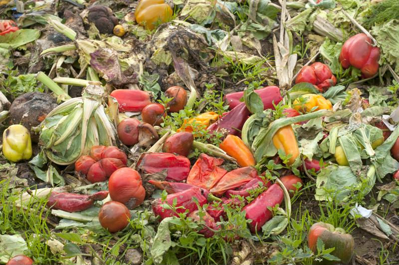 Cutting down food waste is critical.